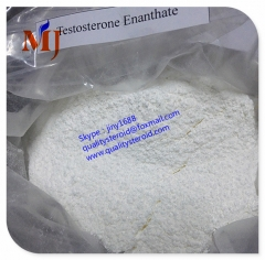 long acting Testosterone Enanthate