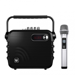 WinBridge K3 Portable Speaker,UHF Wireless Battery Powered PA System W/Echo