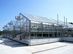 Wide Span Greenhouse