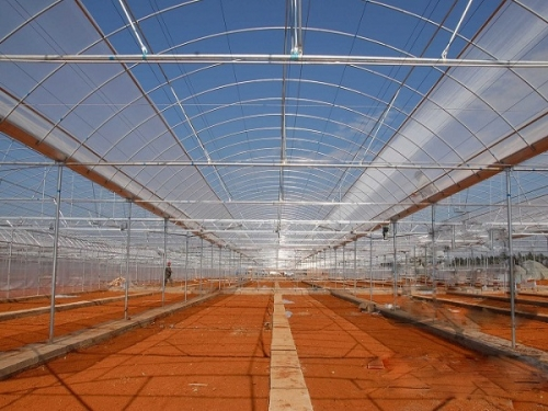 Arched Multi-Span Greenhouse