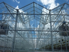 Roof Open Type Greenhouse