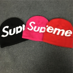 [No.635] Free Shipping big logo beanie
