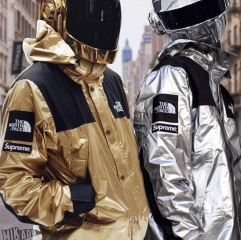 [No.507] 18ss TNF Metallic Mountain Parka 3 colors