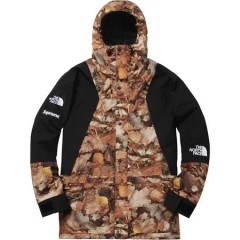 [No.424] 16FW TNF Mountain Light Jacket