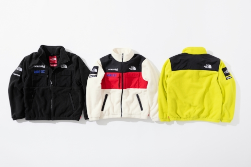 [No.225] 18FW TNF Expedition Fleece Jacket 3 colors