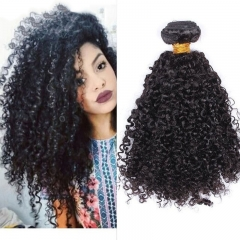 Best Kinky Curly Brazilian Virgin Hair 1 Pcs Brazilian Hair Weave Bundles 8A Hair Products Curly Human Hair Extensions
