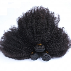 Pwigs Brazilian Kinky Curly Virgin Hair Human Hair Weaving Bundles Natural Color 1Pc