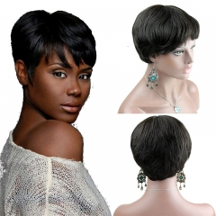 Human Wigs Short  Natural Hair Wigs for Women