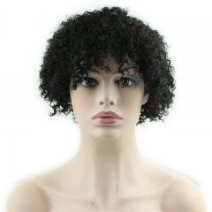 Short Afro Kinky Curly Human Hair Real Looking Wigs Kinky Curly Wig Human Hair for Black Women Natural Color
