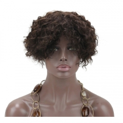 pwigs Short Kinky Curly Wig Real Human Hair Afro Curly Wigs Natural Looking For Women