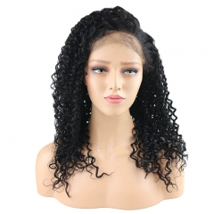 100 Percent Human Hair Full Lace Wigs Kinky Curly Hiar Natural Hair Line Pre Plucked Lace Front Wig With Natural Hair Line Malaysian Virgin Hair