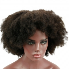 180 Dnesity Afro Kinky Curly Brazilian Human Hair Lace Front Wig Pre Plucked Bleached Knots