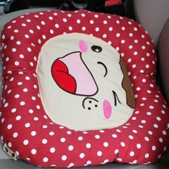 Smile Cotton Embroidered Cushion (Colour: Red)