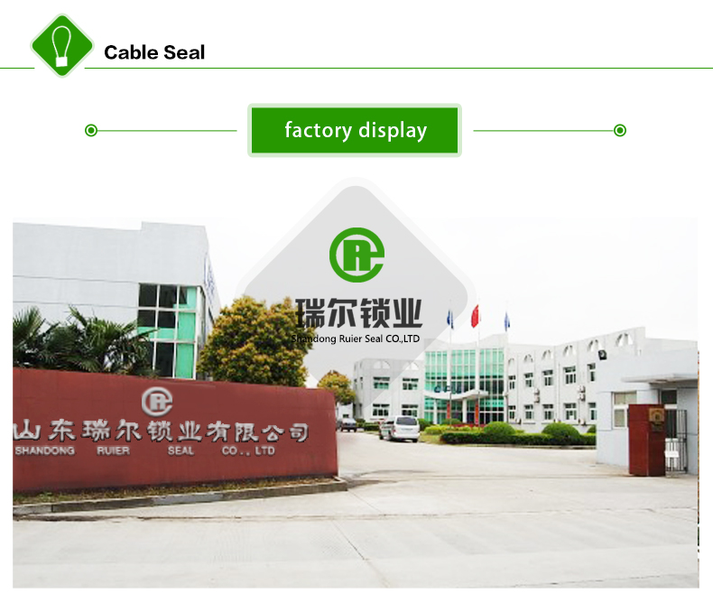 Shandong Ruier Seal Co., Ltd.