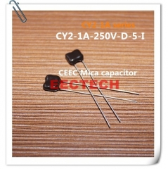 CY2-1A-250V-D-5-I mica capacitor from Beijing EECTECH