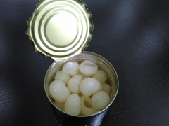 Canned Longans