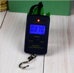 Portable mini Hang Luggage scale 40kgs with hook,blue light
