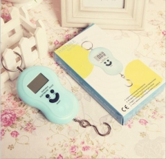 Portable Hang Luggage scale 50kgs with hook,blue light