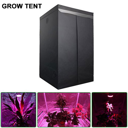 Plant Growing Tent with Observation Window and Removable Floor Tray good for Indoor Plant Growing