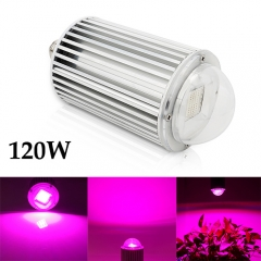120W  LED COB Grow Light ,40pcs Integrated LED Chips Fit for Indoor Plant Vegetable Flower Seeding