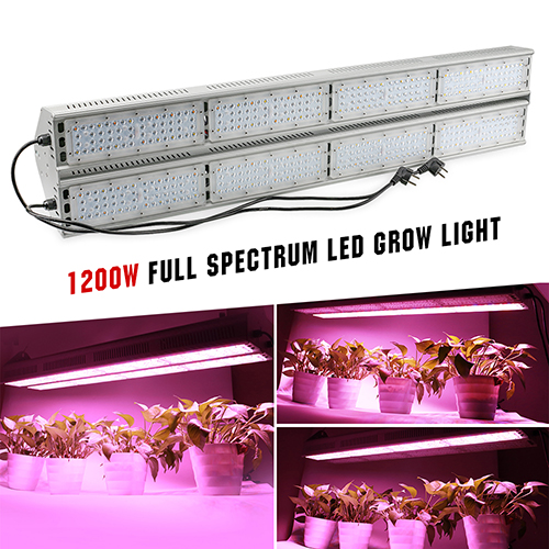1200W Full Spectrum LED Grow Lights for Cannabis,Greenhouse Hydroponic And Indoor Plants