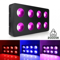 2000W COB Full Spectrum LED Grow Lights for Greenhouse Hydroponic Indoor Plants Veg and Flower