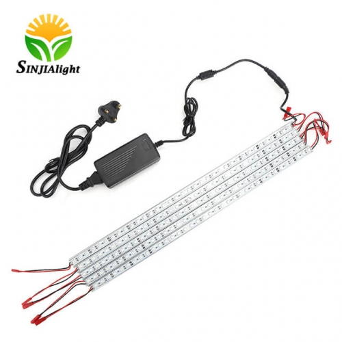 [Pack of 5] 5W 0.5M 12V Led Strip Lights - SINJIAlight