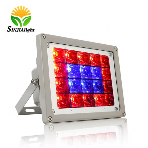 40W 20Integrated LED Chips Waterproof LED Plant Grow Flood Light - SINJIAlight