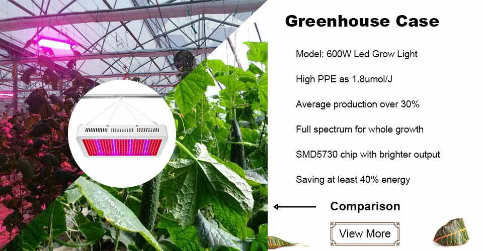 600W 594leds Full Spectrum Panel Grow Light - SINJIAlight