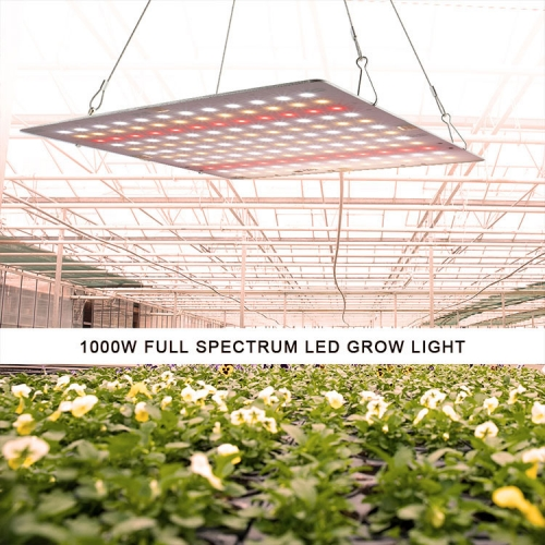 1000W/2000W/3000W/4000W Quantum Boards with Mean Well Power - SINJIAlight
