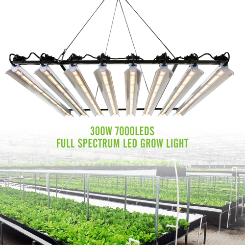 300W 8 Bars High Power Full Spectrum 7000 Leds Grow Light - SINJIAlight (ZW0328)