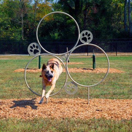 dog hoop jumping dog park metal agility training equipment kits