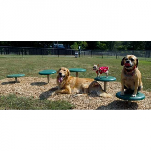 pet dogs Agile walking jumping area dog park walk step agility training equipment