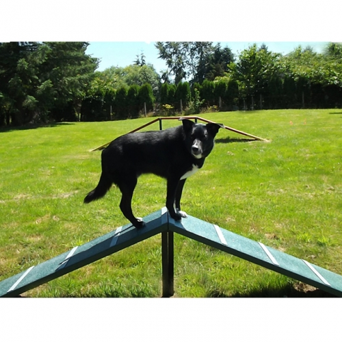 dog park Walk Ramp Agility Training equipment kits