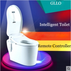 GLLO Toilet GL-992E Bidet Toilet Seat Siphon Jet Intelligent One Piece Toilet With Toilet Seat With Heater