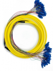 48 Core Harness  & Fanout Patch Cords