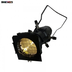 High Quality LED 200W Spot Imagery Light LED Stage Pattern Lamp 2DMX Channel For Indoor Disco Party Disco SHEHDS Stage Lighting