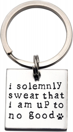 LParkin I Solemnly Swear That I am up to no Good! - Unique Pet Id Tag - Dog Tag - Cat Tag