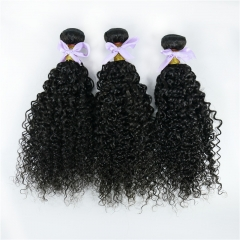 3 Bundles Curly Hair Weft Virgin Hair No Chemical Processing Natural Color