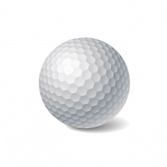 Custom Double Layer Practice Golf Balls