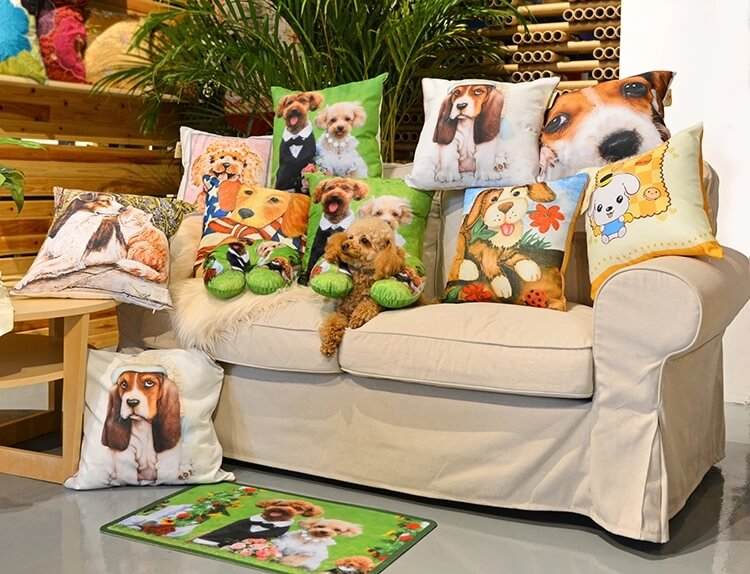 sofa pillows show
