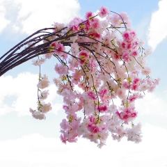 Pack of 50pcs Dropping cherry blossom flower