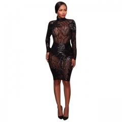 Women's Sexy Skinny Open Back Embroidered Sequin Dress