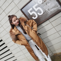 Women's winter new thick coat hooded big fur collar down jacket