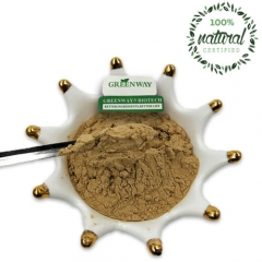 Albizia Julibrissin Bark Extract Powder