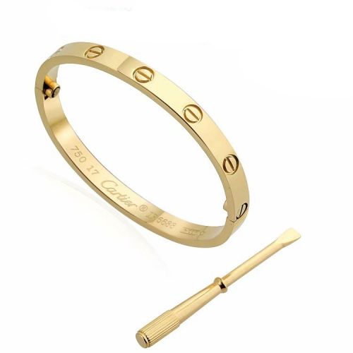 HY200717-B003 Stainless steel  Cartie*r bangle