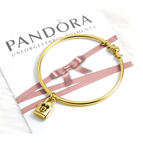Stainless steel Pandor*a Bangle HY210107-de001 (2)
