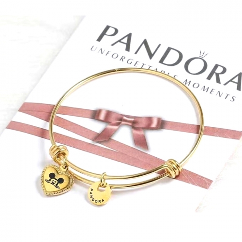 Stainless steel Pandor*a Bangle HY210107-de001 (6)