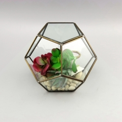Wholesale Ball Shaped Terrarium Container Glass Geometric Plant