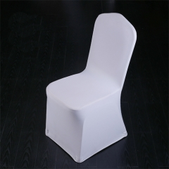 Plain Spandex Chair Cover in FEIBIXUAN